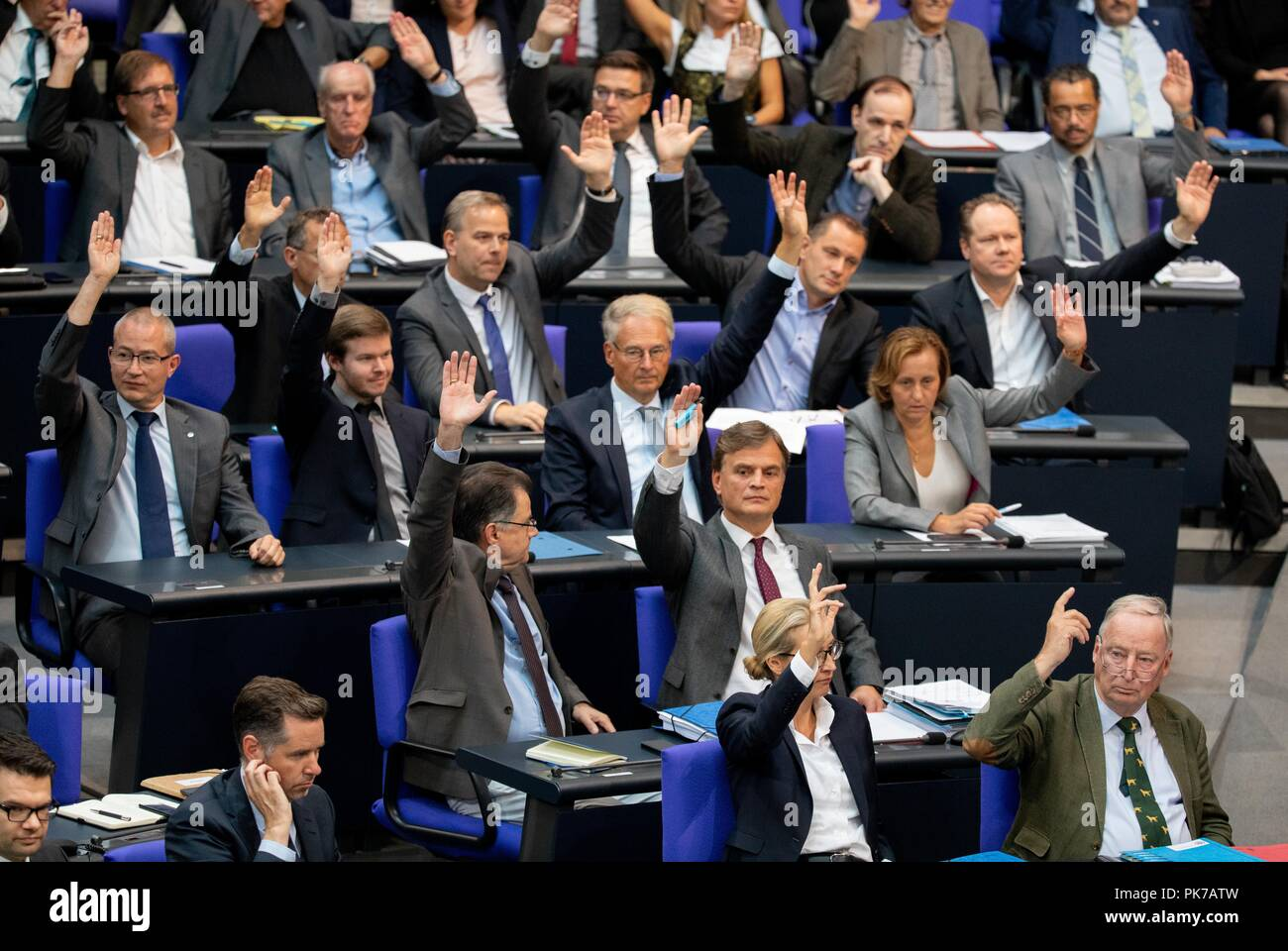 Berlin, Germany. 11 September 2018, Berlin: The faction of the AfD with Alice Weidel (front M), faction leader of the AfD, and Alexander Gauland (r), faction leader of the AfD, raise their hands at the plenary session in the German Bundestag for a vote on the agenda. The main topic of the 47th session of the 19th legislative period is the Federal Government's draft budget 2019 and the federal budget 2018 to 2022. Photo: Bernd von Jutrczenka/dpa Credit: dpa picture alliance/Alamy Live News - Stock Image