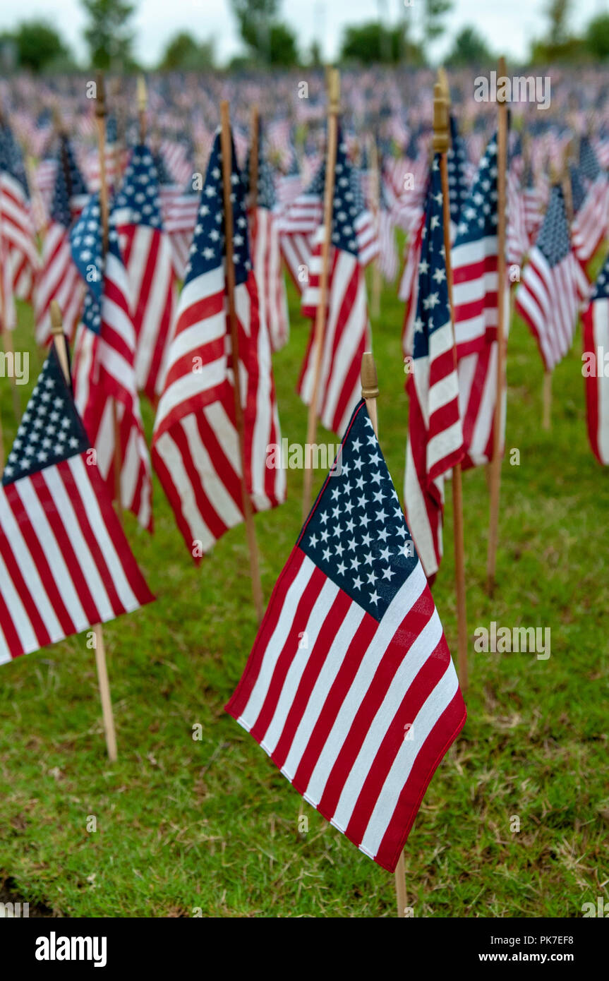 McKinney, USA. September 11: A Day of Remembrance. A lawn is dotted with U.S. flags in memorial to those who lost their lives in the September 11, 2001 terrorist attack on the World Trade Center towers in New York City and the Pentagon in Washington D.C. Credit: Nick Young/Alamy Live News - Stock Image