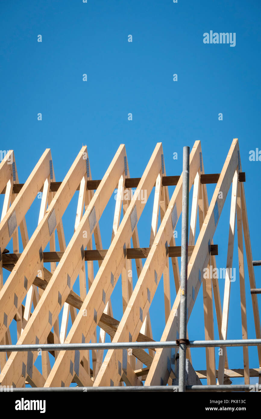 roof trusses on a new building - Stock Image