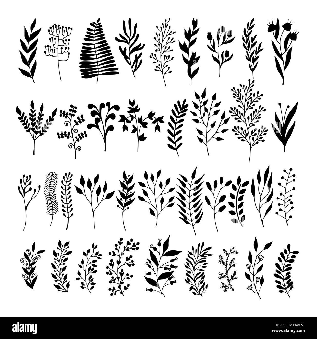 Vector Floral Elements In Doodle Style Flowers And Leaves Summer