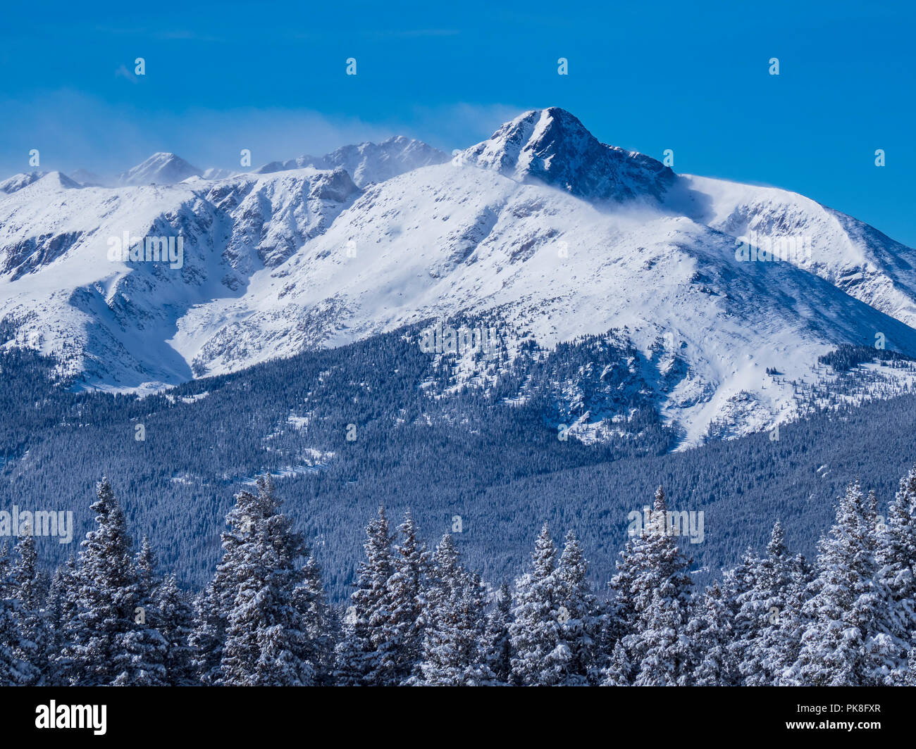 Mount of the Holy Cross from Belle's Camp, Blue Sky Basin, winter, Vail Ski Resort, Vail, Colorado. - Stock Image