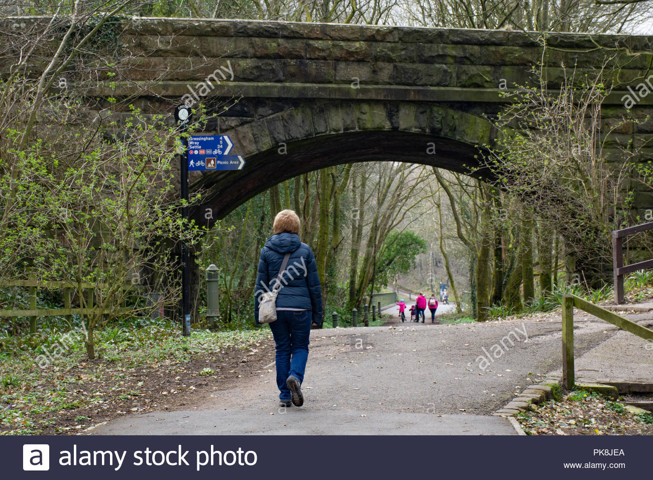 A walker on the Millenium Park at Crook of Lune, Caton, Lancaster, a dismantled railway now providing traffic free access in the Lune Valley - Stock Image