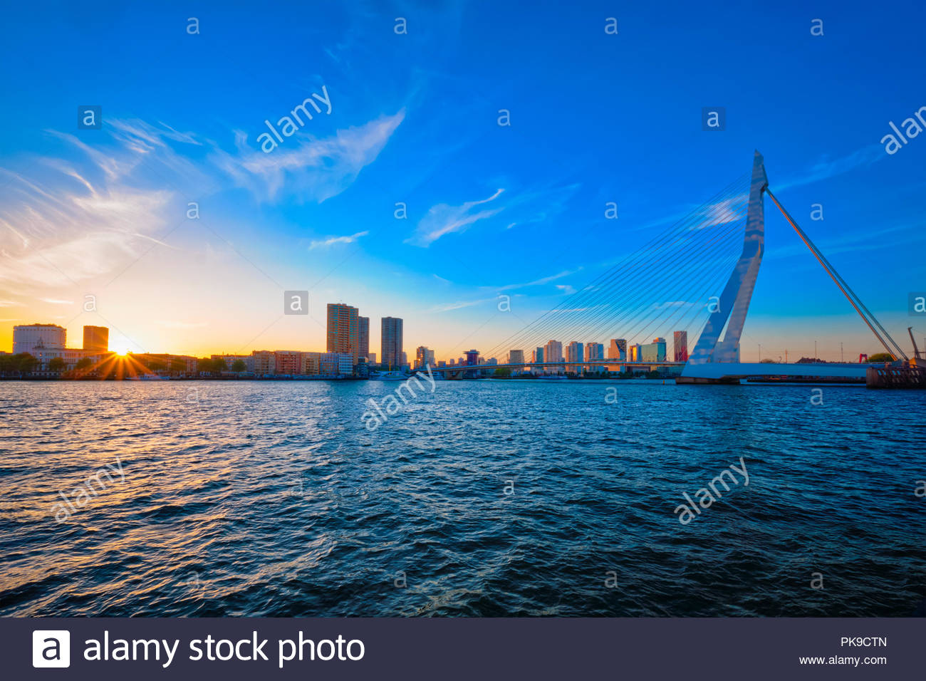 Erasmus Bridge on sunset, Rotterdam, Netherlands Stock Photo