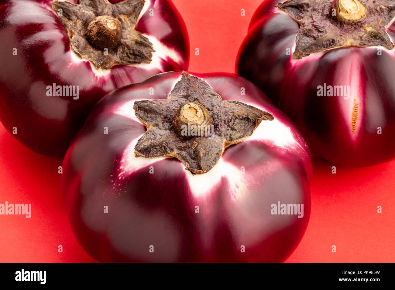 round mauve eggplant on red background - Stock Image