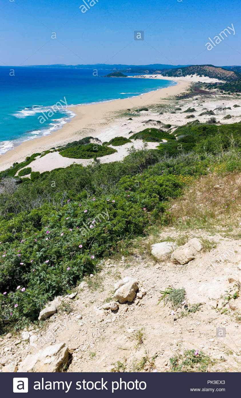 Sandy shoreline with dunes on the Karpasian Peninsula, Northern Cyprus Stock Photo