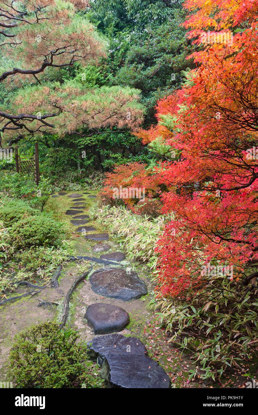 Daitoku-ji, Kyoto, Japan. Colourful autumn foliage in the garden of Koto-in zen temple - Stock Image