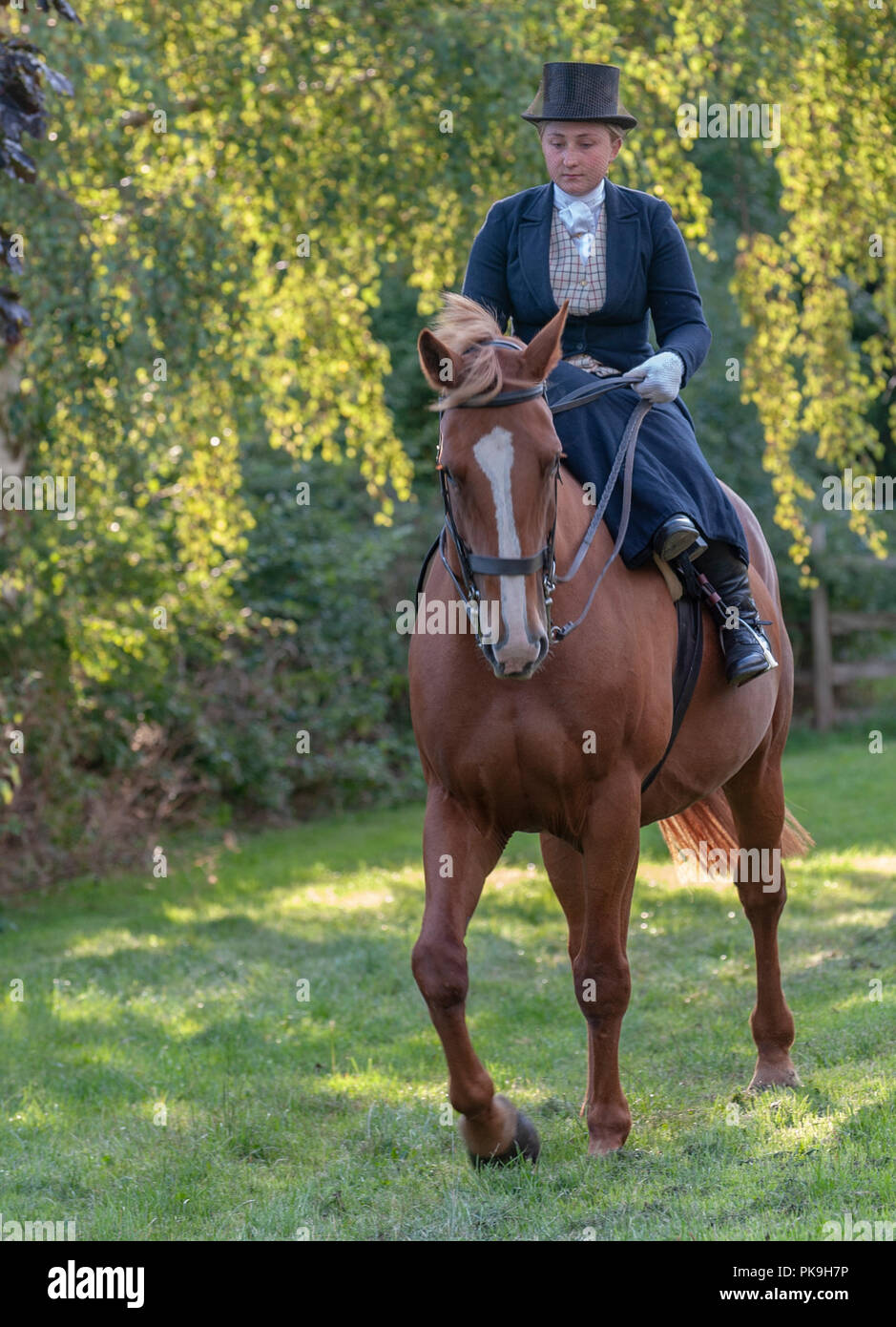 An elegent young lady riding in a traditional side saddle wearing top hat and face veil - Stock Image