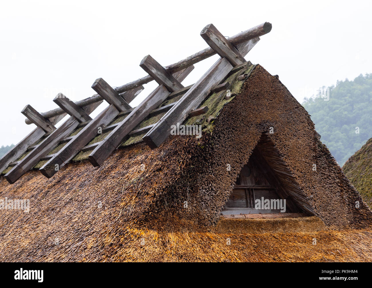 Thatched roofed house in a traditional village, Kyoto Prefecture, Miyama, Japan - Stock Image
