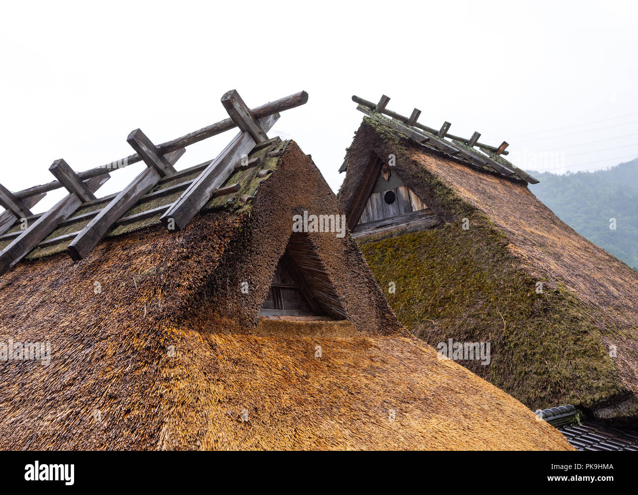 Thatched roofed houses in a traditional village, Kyoto Prefecture, Miyama, Japan - Stock Image