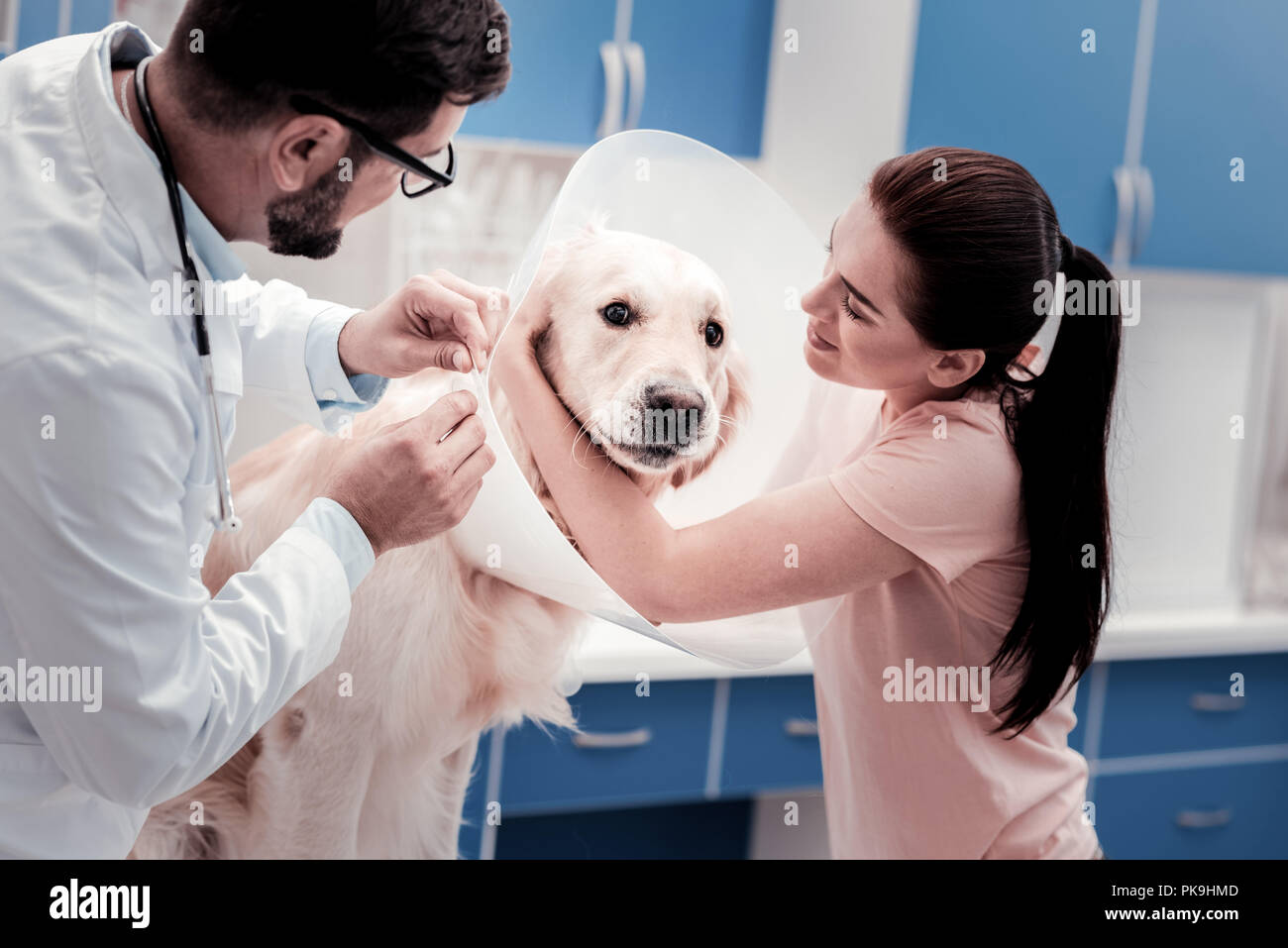 Charming girl embracing her pet - Stock Image
