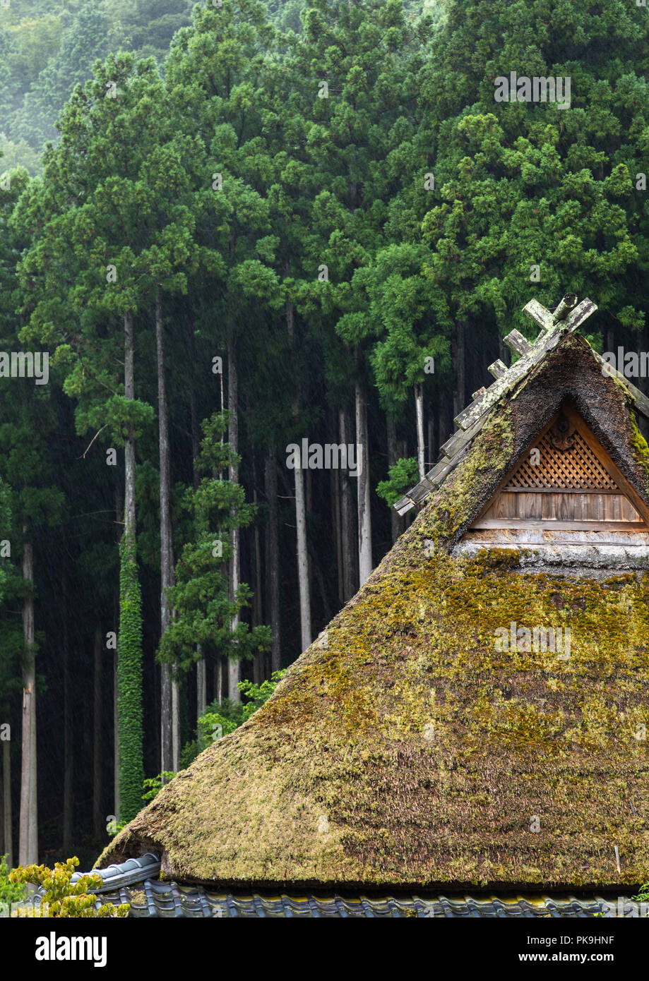 Thatched roofed houses in a traditional village against a forest, Kyoto Prefecture, Miyama, Japan - Stock Image