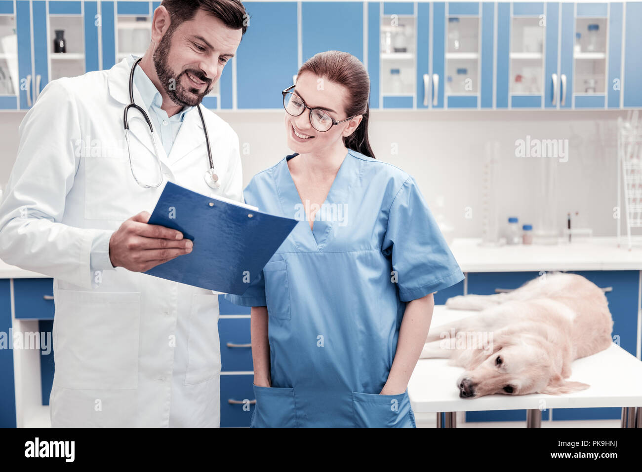 Charming assistant listening to her colleague - Stock Image