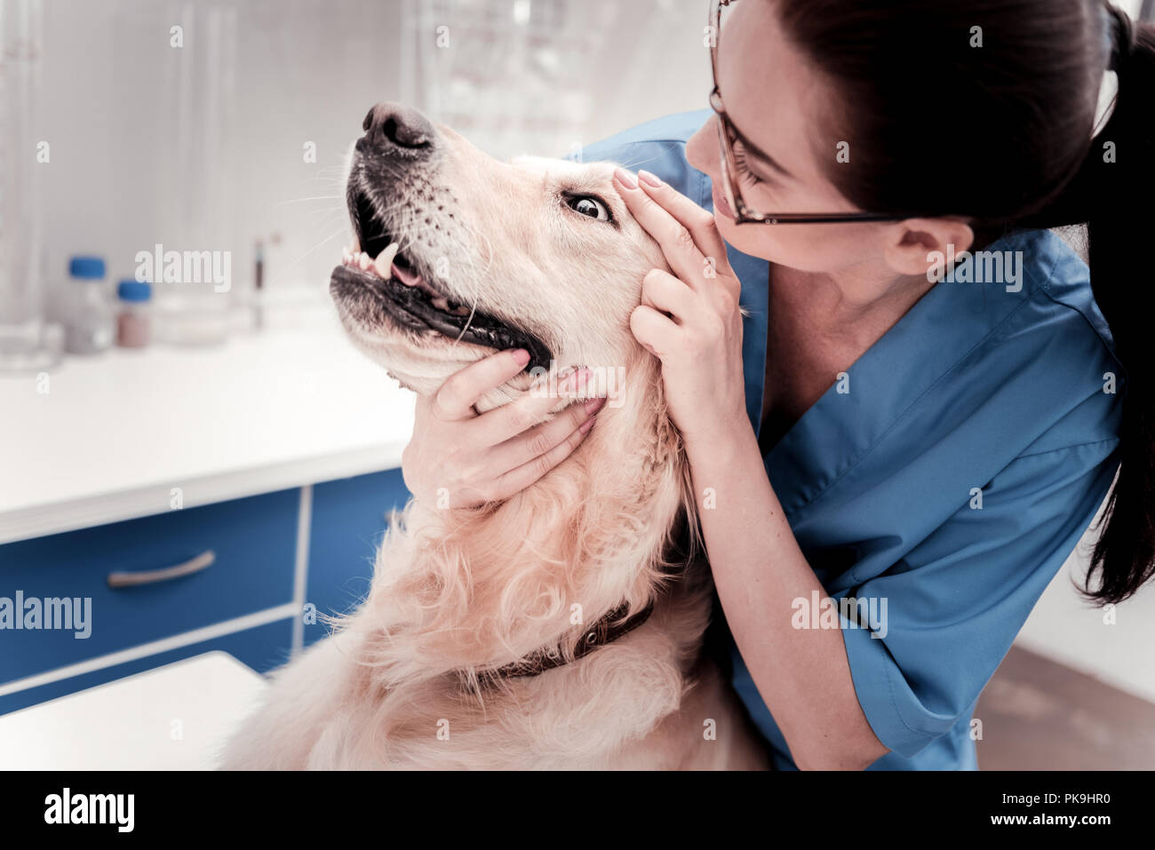 Sick dog keeping mouth and eyes wide opened - Stock Image