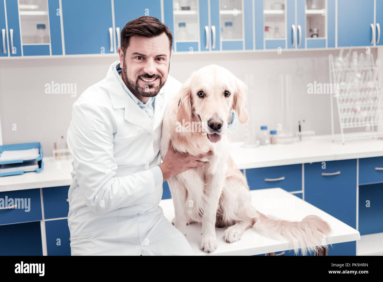 Attractive medical worker embracing calm dog - Stock Image