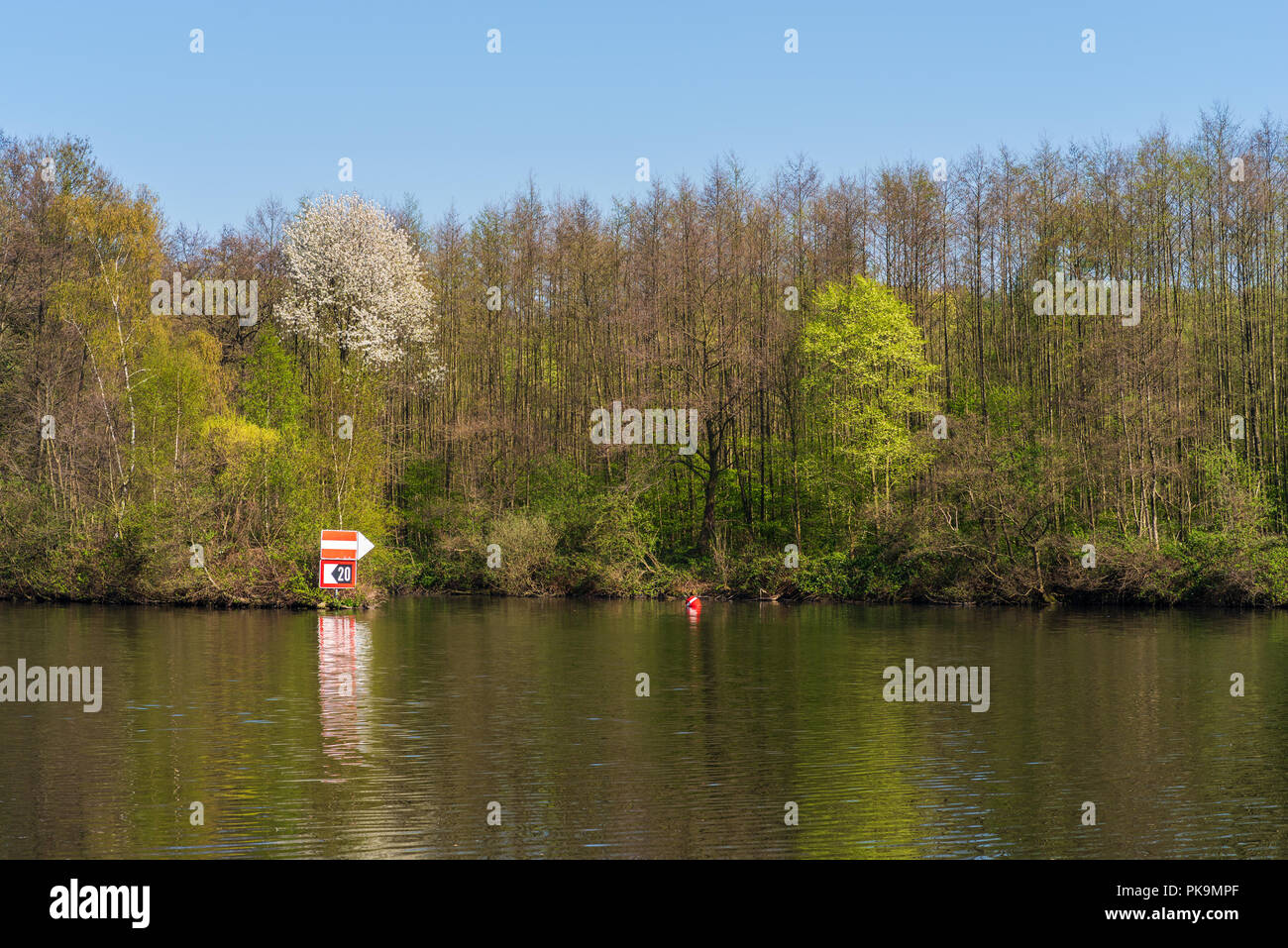 View to the green bank of the Ruhr Stock Photo