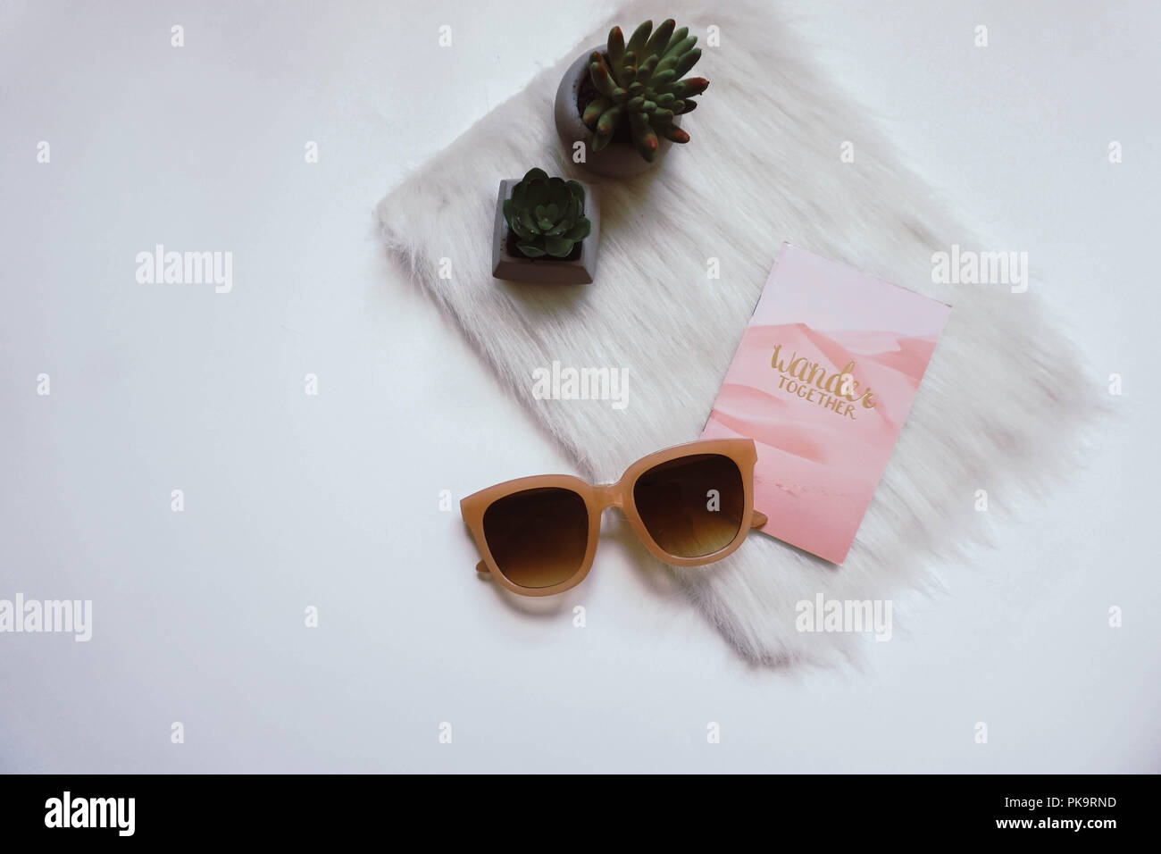 Bright, white flat lay photograph featuring succulents, fur rug, sunglasses, and a wander together notebook. - Stock Image