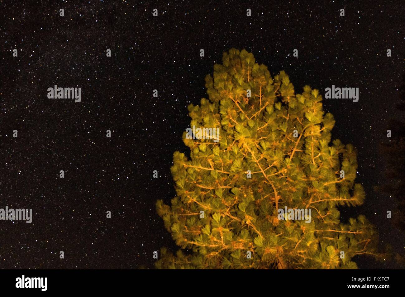 Astrophotography galaxy star background for astronomy, space or cosmos, a night sky universe, interstellar science fiction texture with a light paint - Stock Image