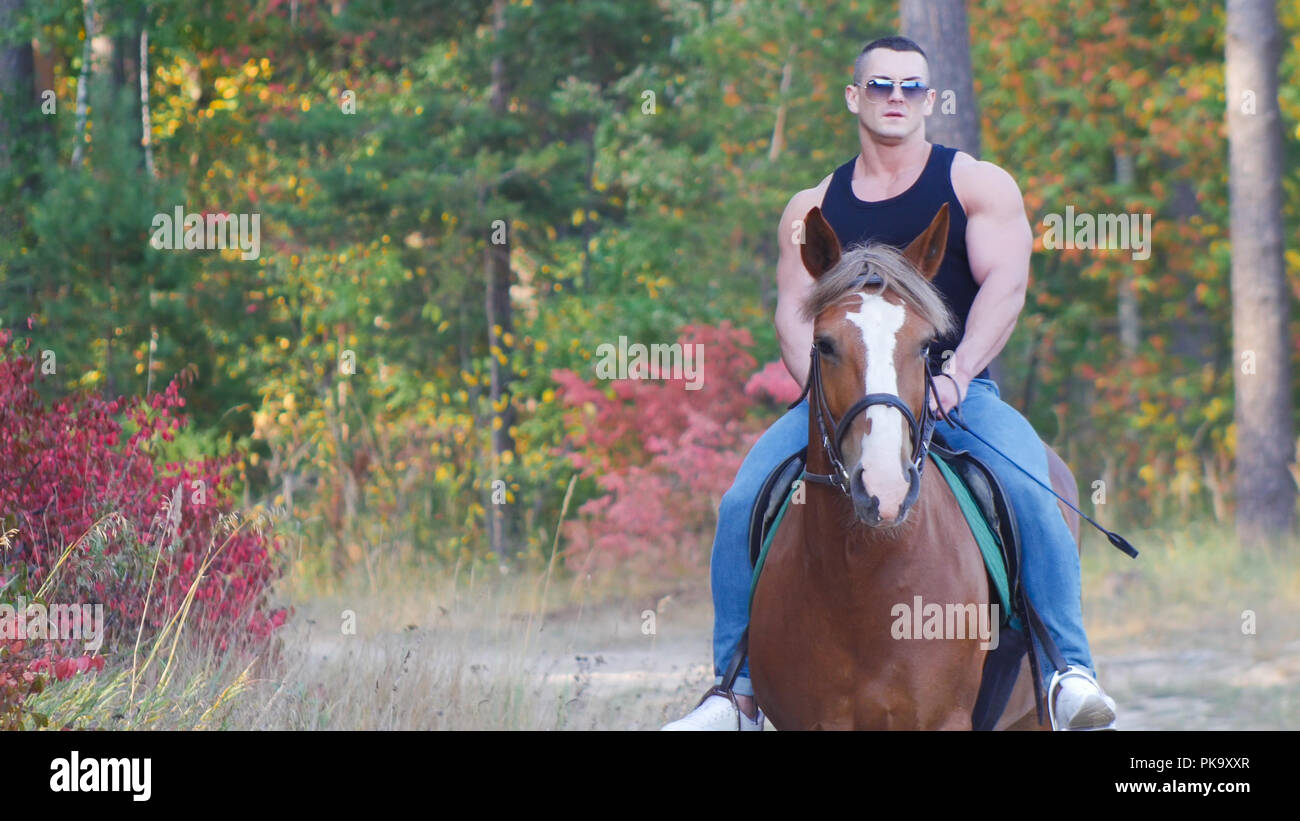 A strong man with a powerful body in a black t-shirt in sunglasses rides a horse - Stock Image