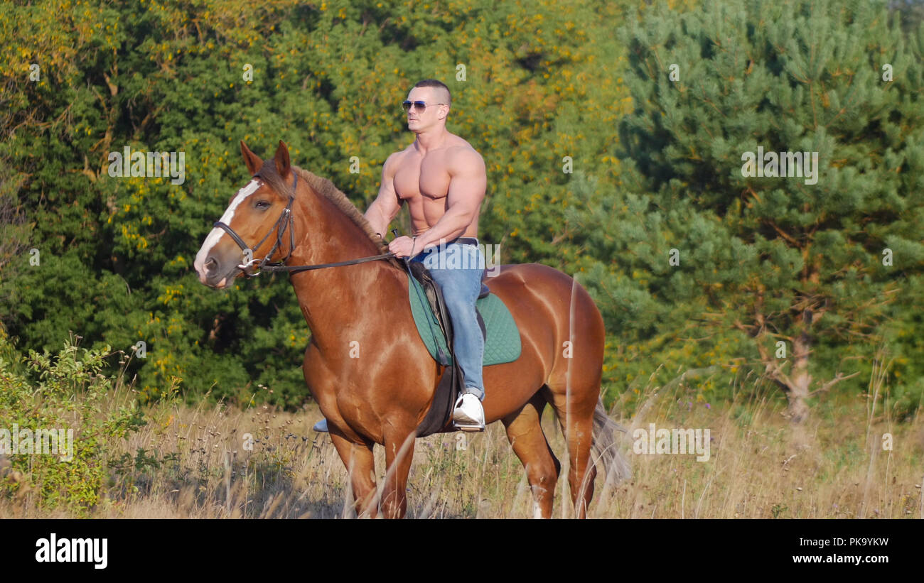 Brutal strong young man rides a horse on the field in the summer - Stock Image