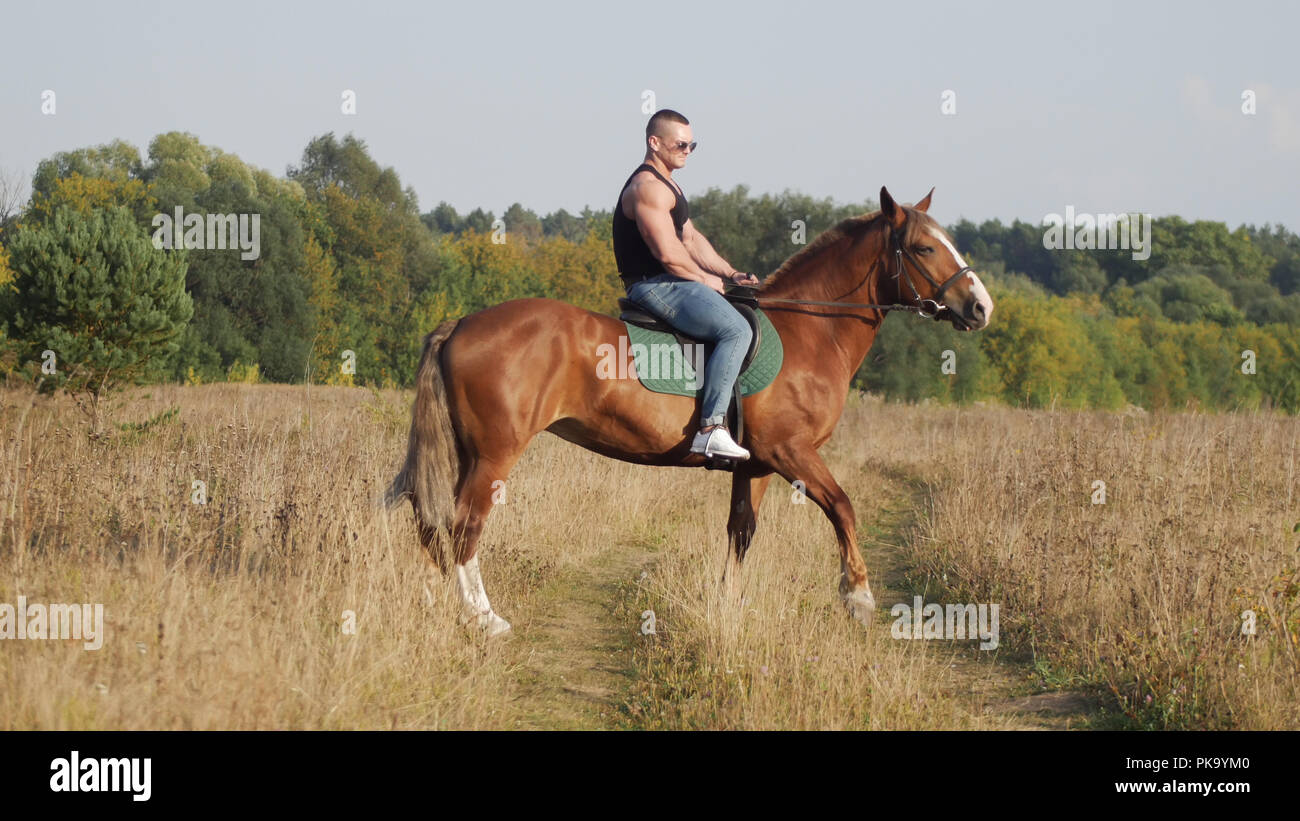 A strong man in a t-shirt of black color, in denim pants and sunglasses riding a horse in nature - Stock Image