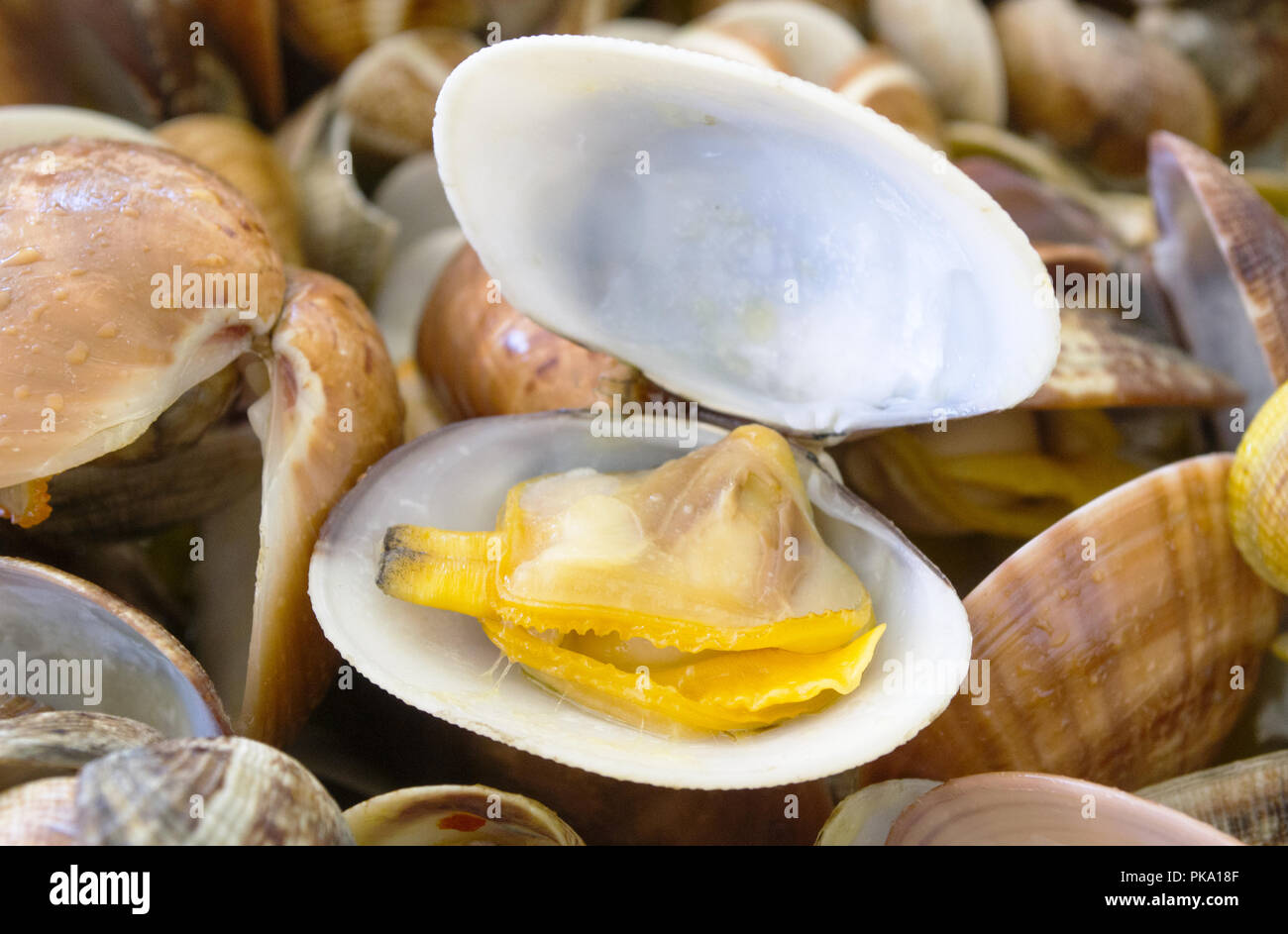 fresh seefood cooked accordin to an italian recipe - Stock Image