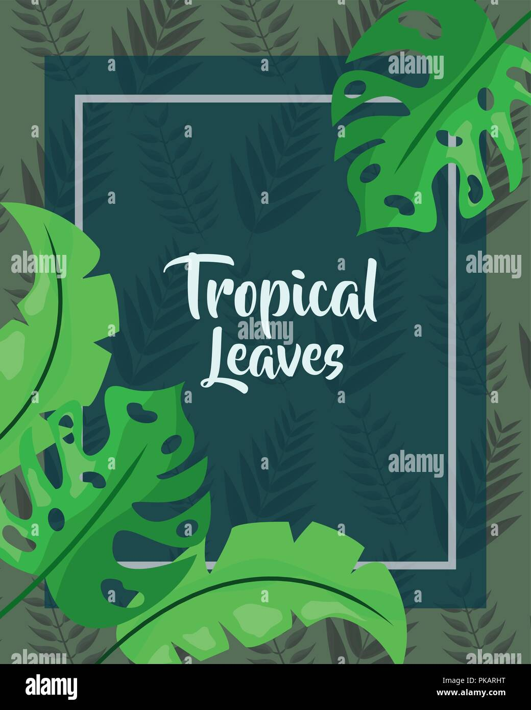 Green Cover Monstera Foliage Tropical Leaves Vector Illustration Stock Vector Image Art Alamy Tropical leaves and flowers doodles drawing ideas/ bullet journal dood. alamy