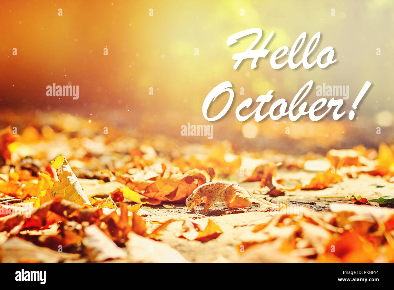 Fashion style October Hello photography pictures for girls
