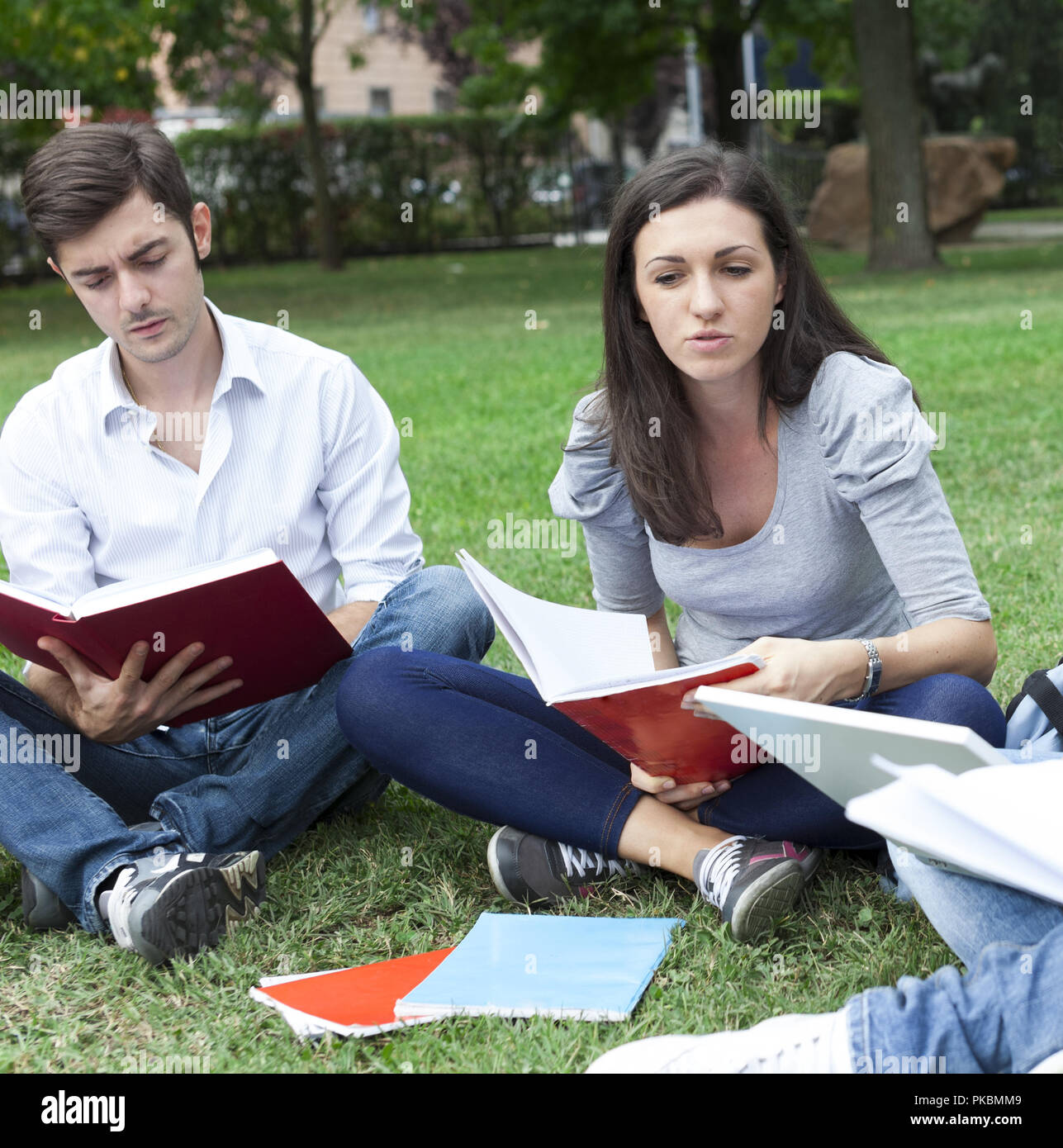 Group of friends studying together in a park - Stock Image