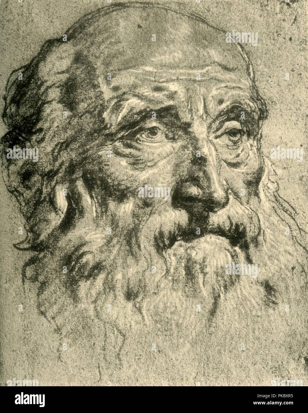 'Head of an Old Man', mid 18th century, (1928). Chalk on paper. At one time known to have been in the collection of the Staatliche Sammlungen, Weimar, Germany. Italian Venetian painter and printmaker Giovanni Battista Tiepolo (1696-1770), worked not only in Italy, but also in Germany and Spain. He was commissioned to carry out frescoes in churches and palaces, and was elected President of the Academy of Padua. As well as his large-scale majestic works, he also produced etchings and oil paintings, and is widely regarded as one of the most important artists of the period. Illustration from The D - Stock Image