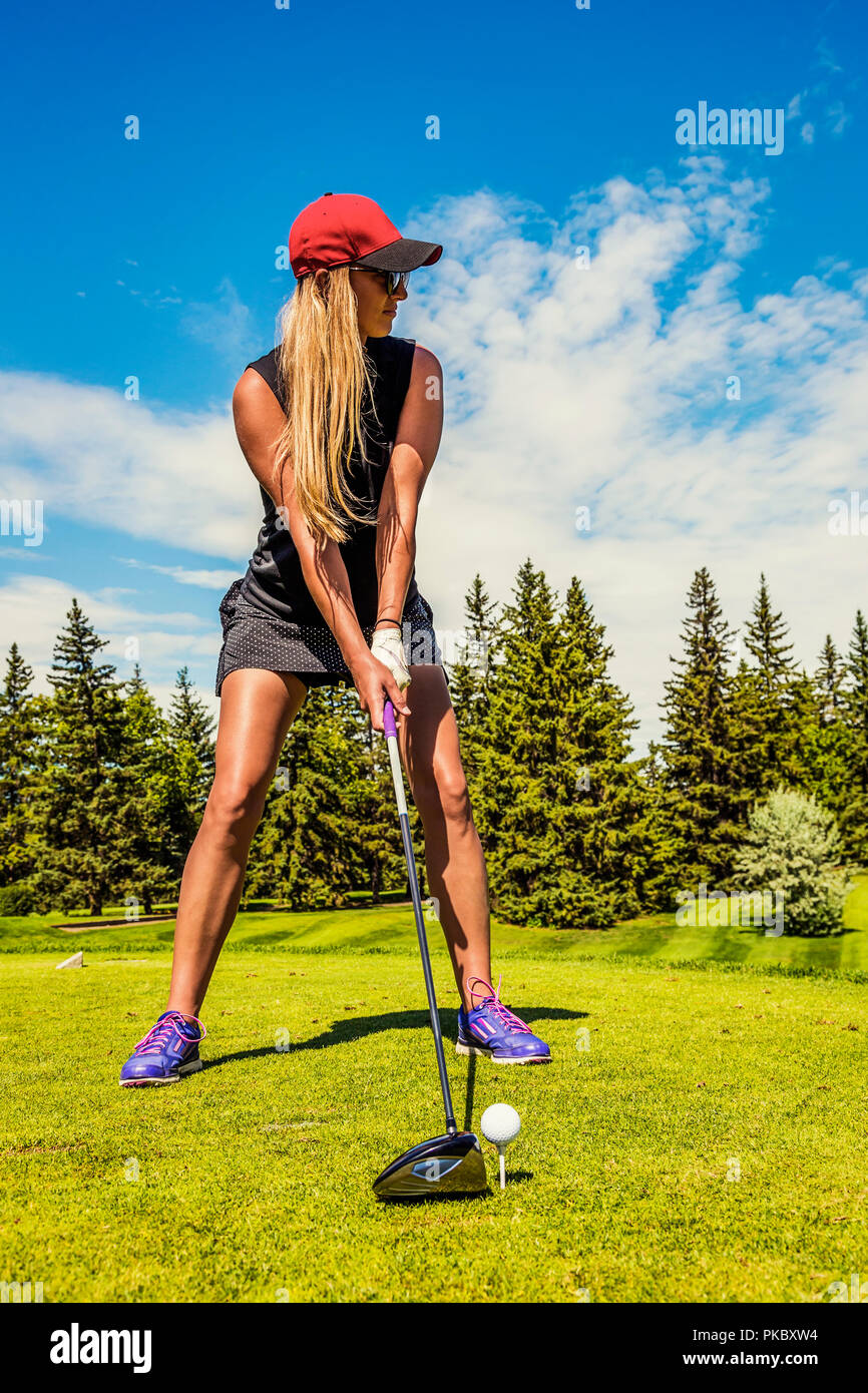 A female golfer lines up her driver to the golf ball on a tee; Edmonton, Alberta, Canada - Stock Image