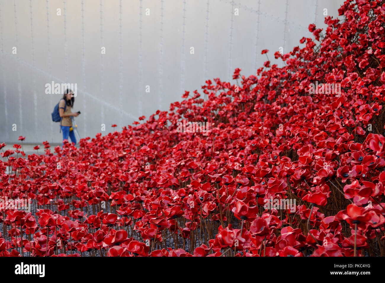 Salford, UK. 12 September 2018. Visitors at Imperial War Museum North look at 'Wave' and 'Weeping Window' an installation by artist Paul Cummins and installation designed by Tom Piper. The installation was originally at HM Tower of London from August to November 2014 where 888,246 poppies were displayed, one for every British or Colonial life lost at the Front during the First World War. Together, the sculptures Wave and Weeping Window are made of over 11,000 poppies. Credit: Premos/Alamy Live News - Stock Image