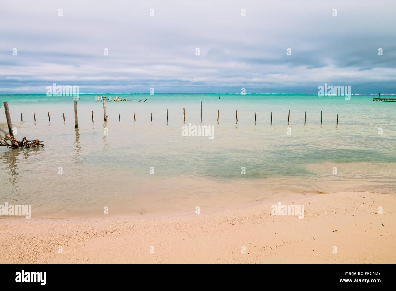 Man Looking at the Horizon in front of an Overcast Caribbean Sea - Stock Image