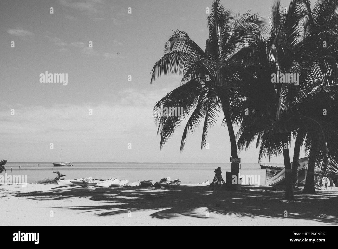 Multicoloured Rental Sea Kayaks on Tropical Beach on a Sunny Day - Stock Image