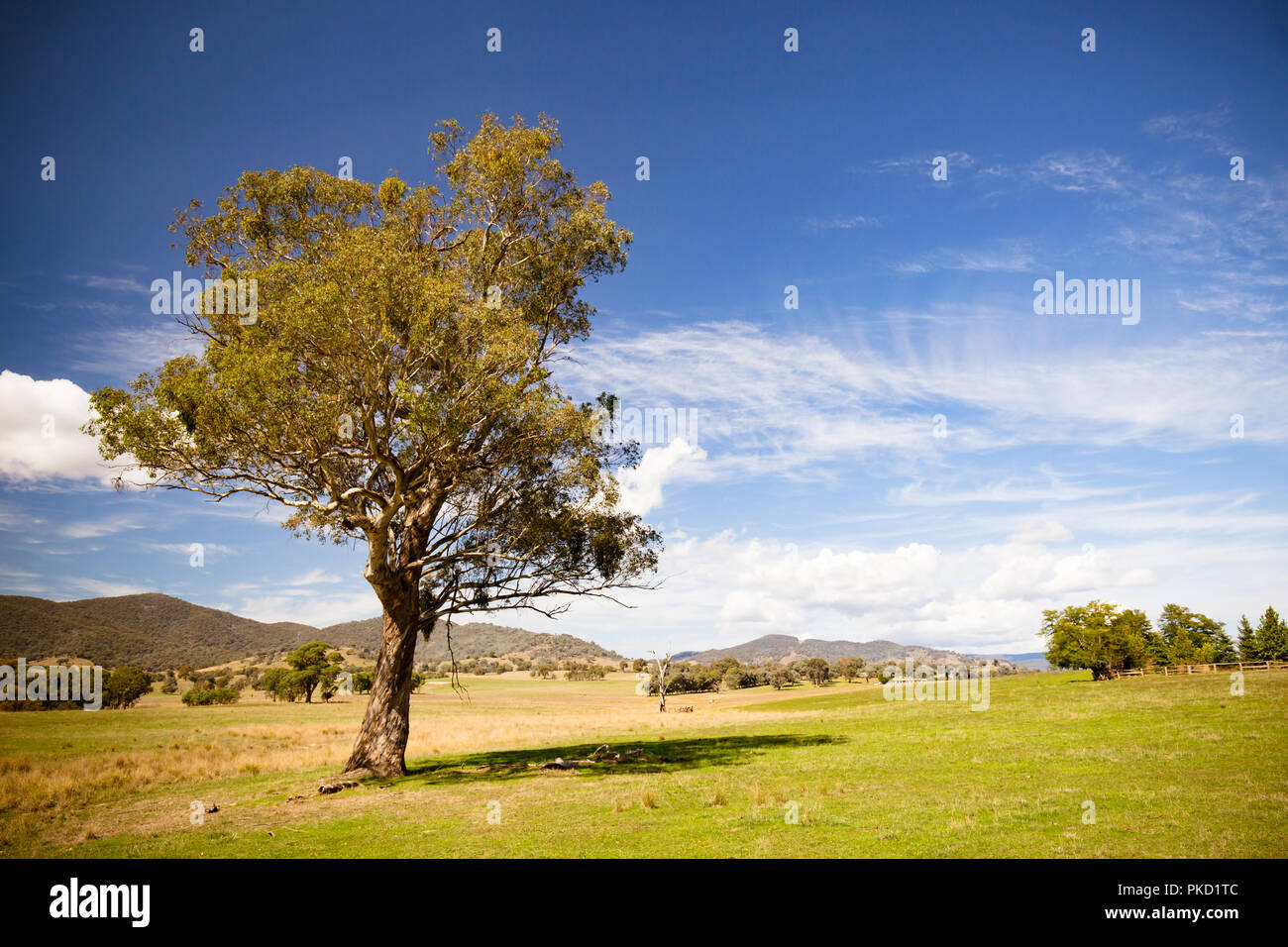 Allans Flat Landscape Australia - Stock Image