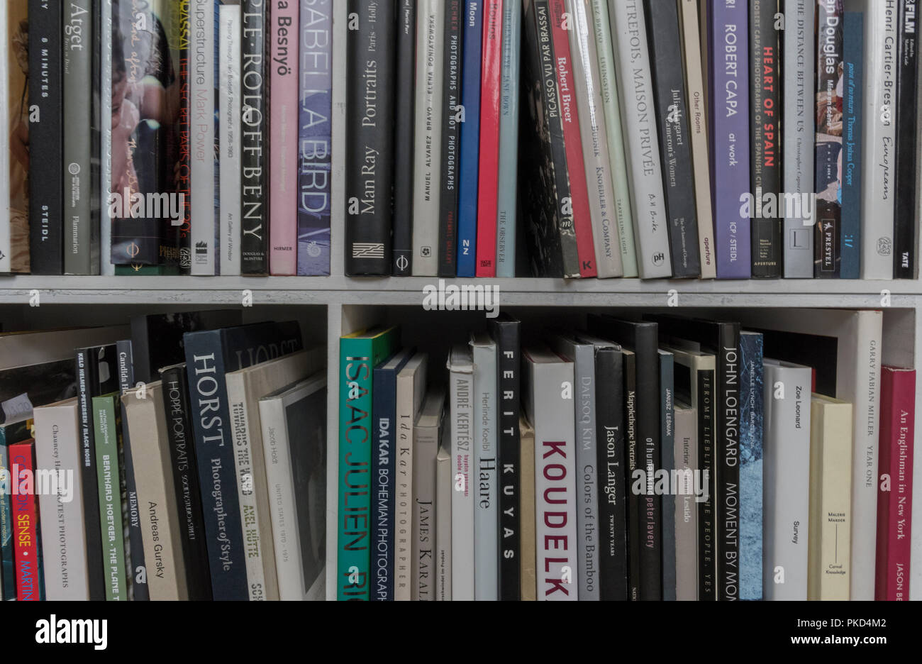 a selection of books on art and photography in a library on a bookshelf. Stock Photo