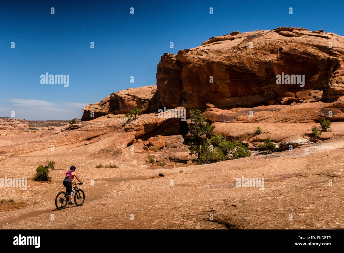 A woman rides a mountain bike on the world famous Slickrock trail in Moab, Utah, USA. - Stock Image
