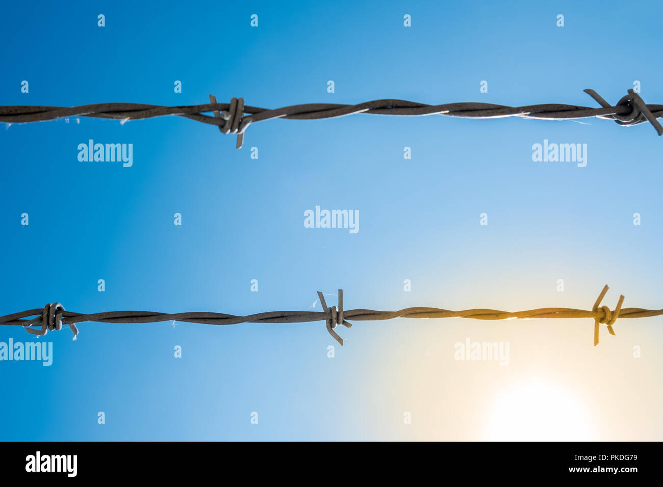 Two strands of barbed wire with blue sky in the background and sunlight - Stock Image