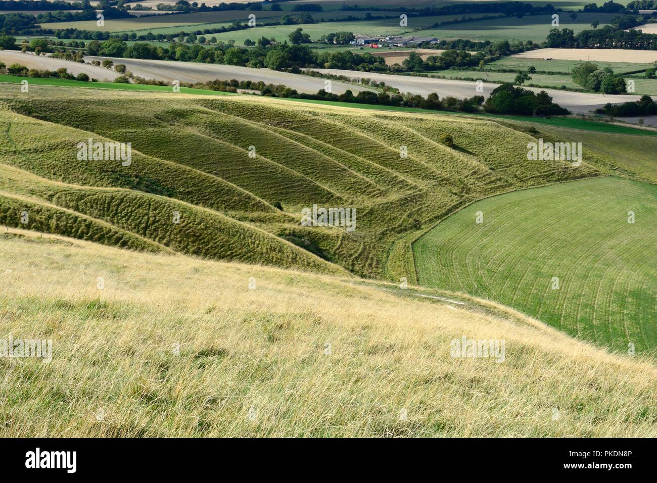 Giants Steps Uffington steep rippled sides left from the retreating permafrost during the last Ice age Oxfordshire England - Stock Image