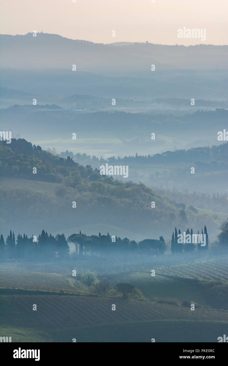 early morning in the Tuscany - Stock Image