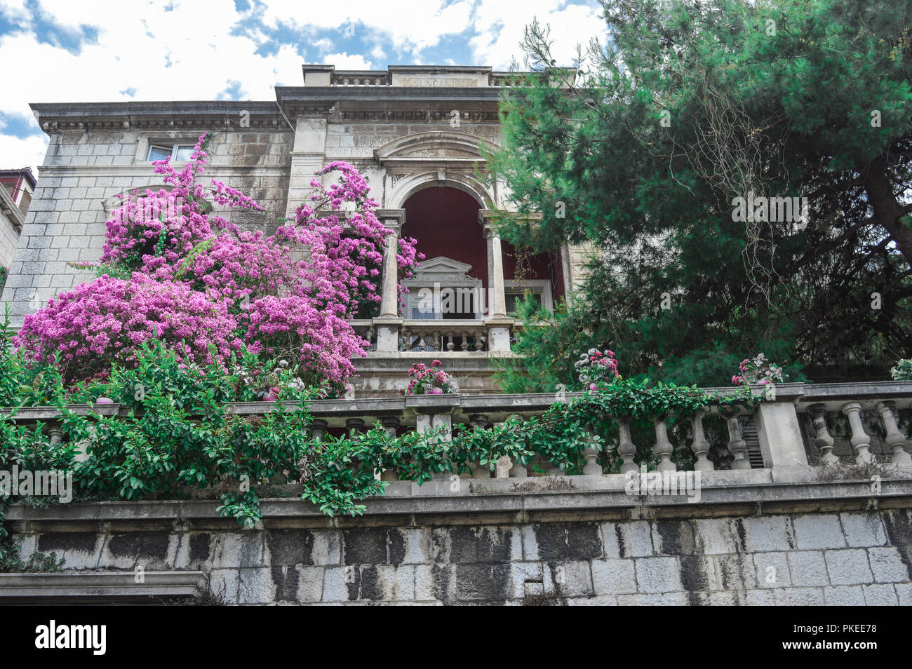 Traditional croatian building surrounded by purple flowers, Dubrovnik, Croatia, Balkan, Hvarska Stock Photo