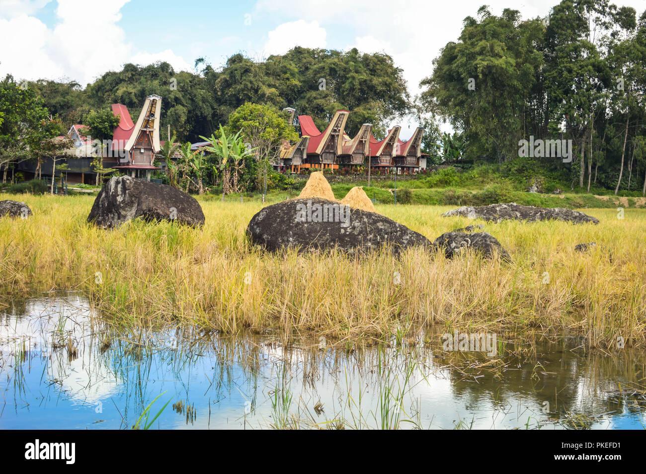 Landscape with traditional Tongkonan houses in Tana Toraja highlands near Batutumongi village. South Sulawesi, Indonesia - Stock Image