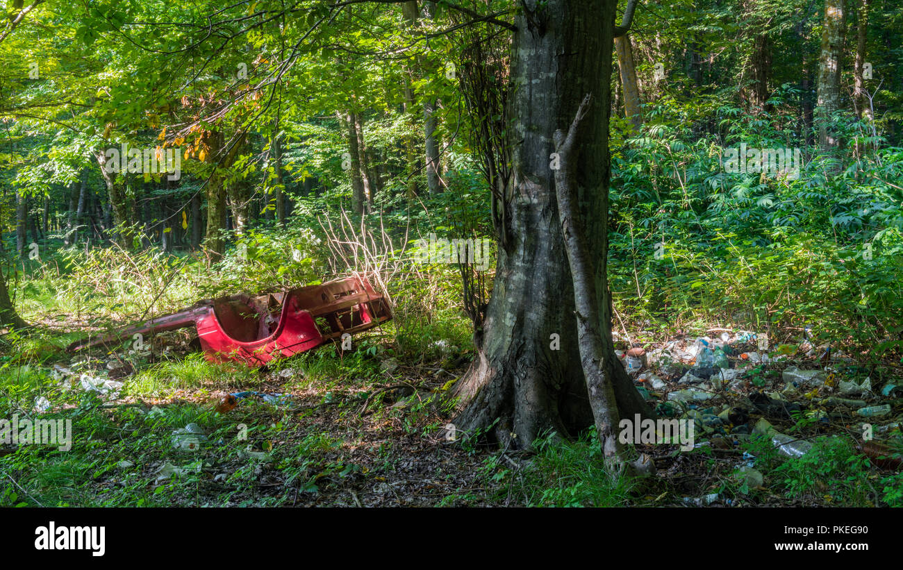 Forest pollution by garbage waste - Stock Image