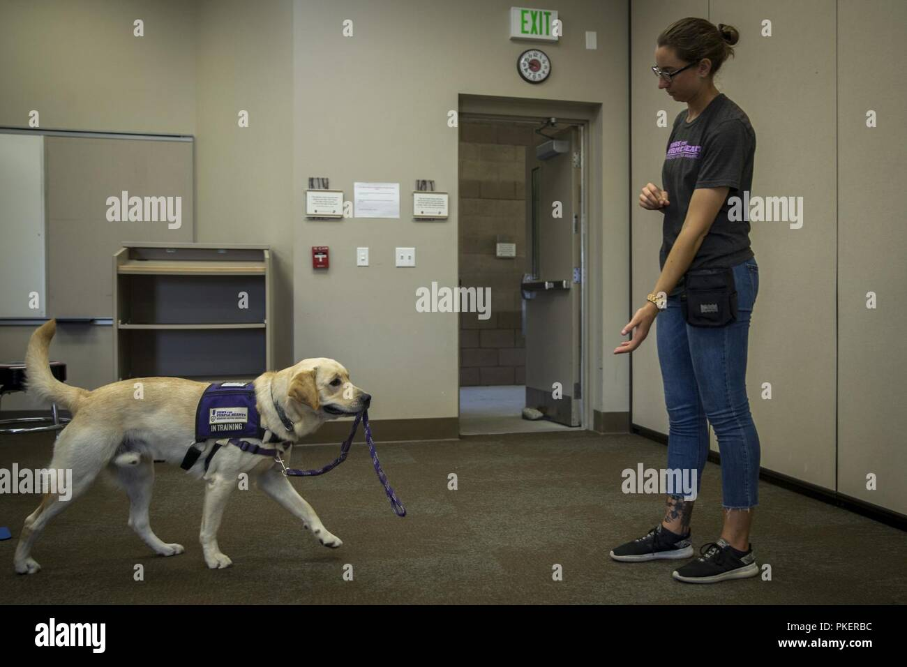 Selah Marting Program Instructor Paws For Purple Hearts Commands