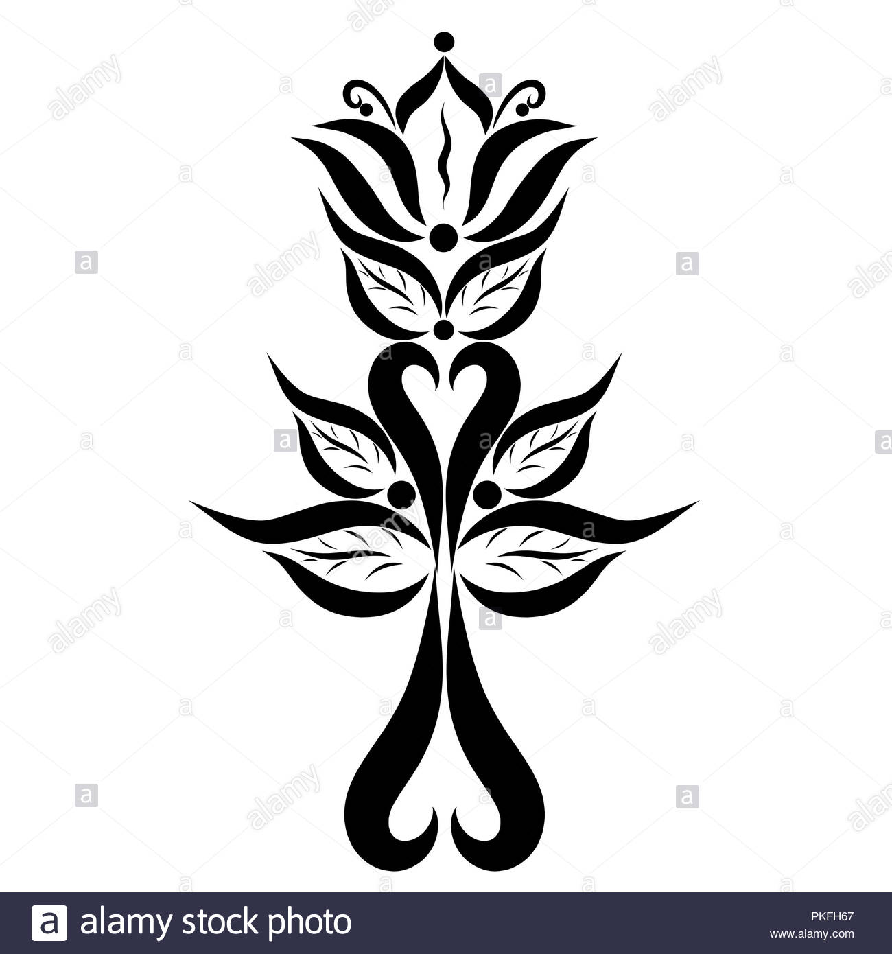 Heart Leaf Lily Stock Photos Heart Leaf Lily Stock Images Alamy