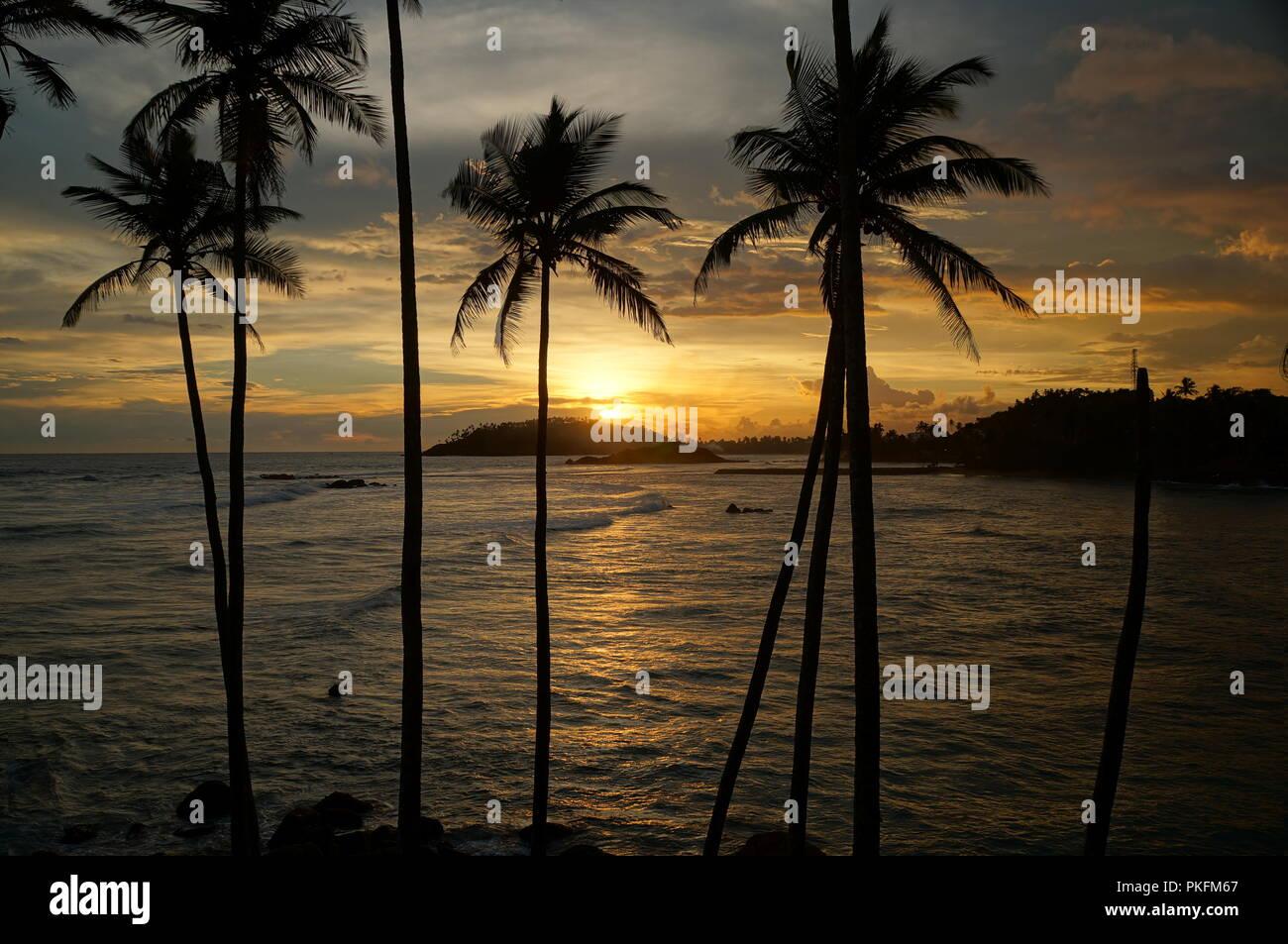 Mirissa Beach, Sri Lanka - Stock Image