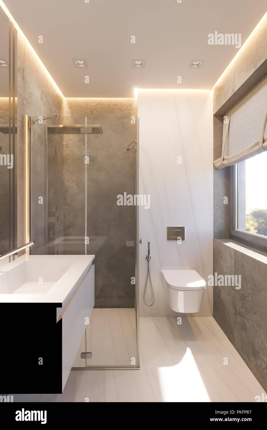 3d Render Interior Design Of The Bathroom With Glass Walk In