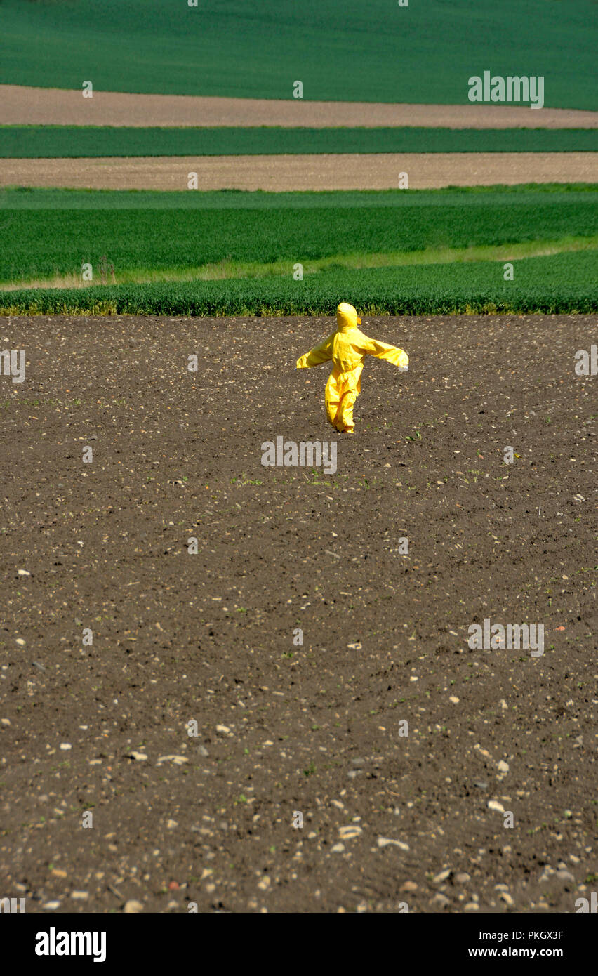 Scarecrow with a yellow suit in the middle of a plowed field and with young shoots, Puy de Dome department, Auvergne, France - Stock Image