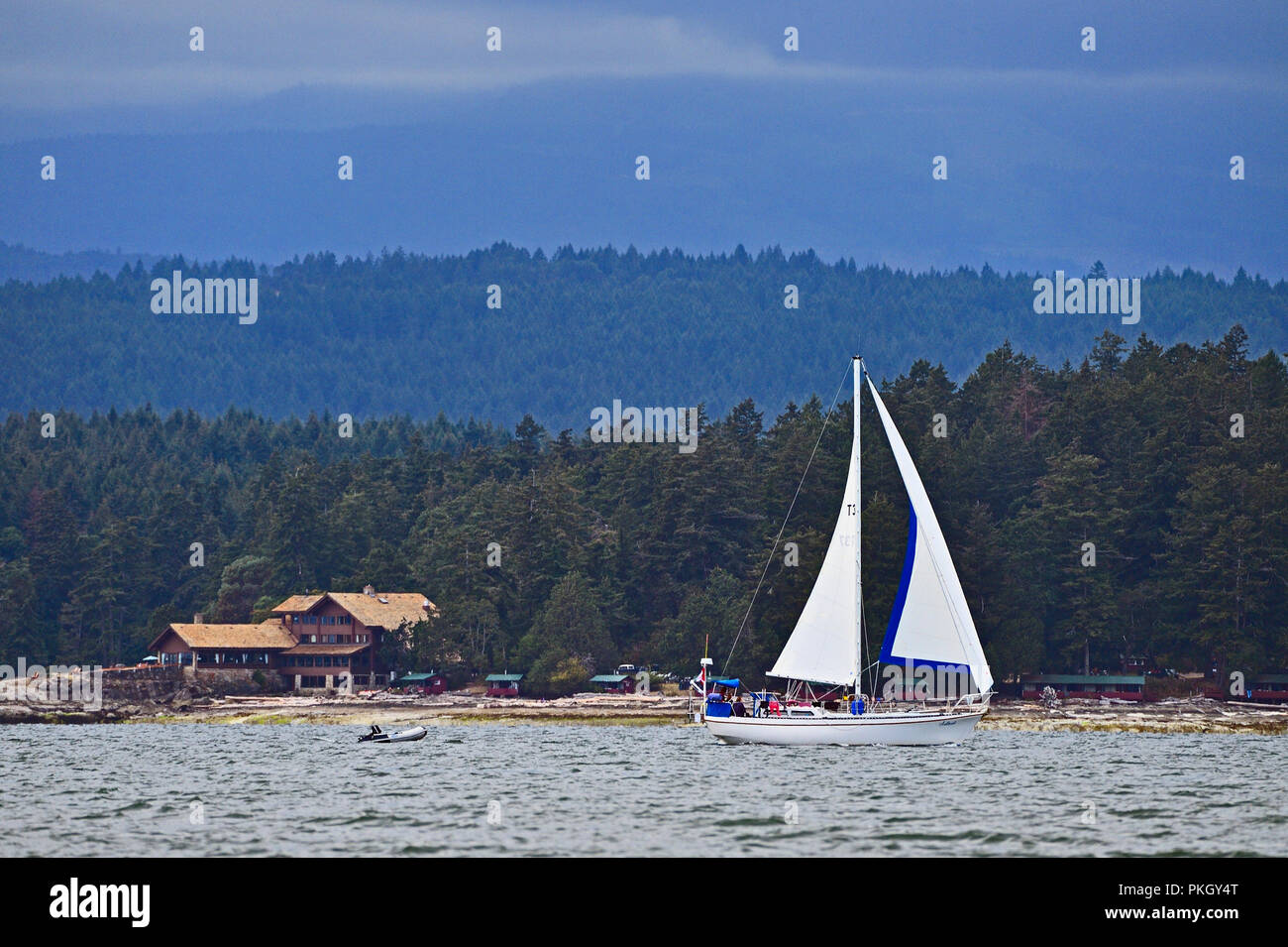 A sail boat enjoying the wind crusing along the shore line near Yellow Point on Vancouver Island British Columbia Canada - Stock Image