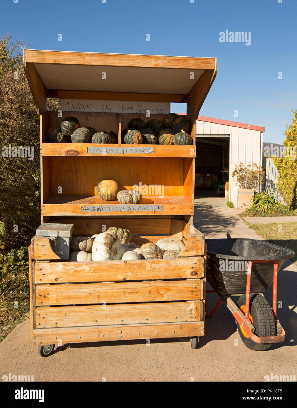 Pumpkins for sale atroadside stall with honesty box for payment at house in Australian rural town - Stock Image