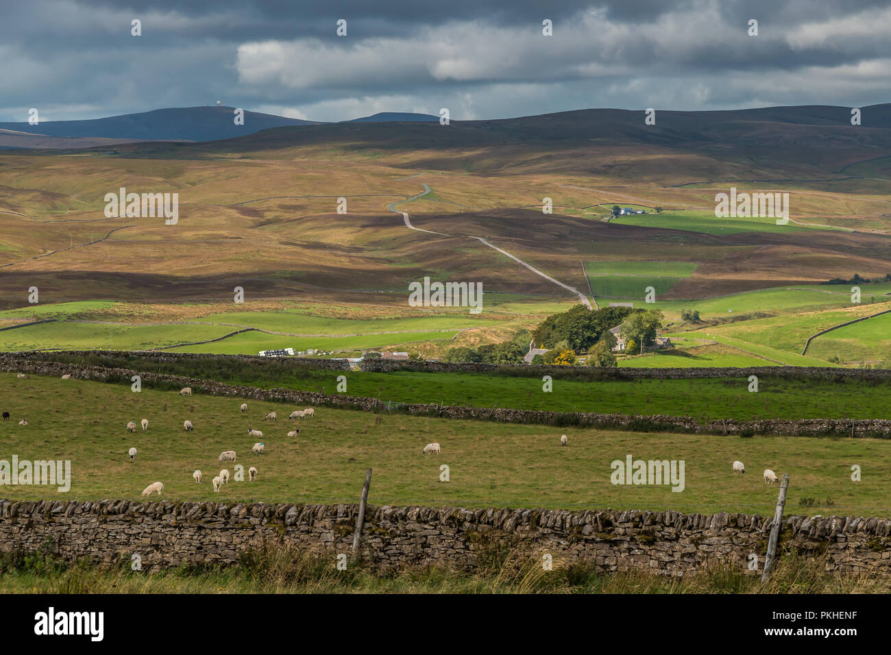 North Pennines AONB Landscape, view towards Langdon Beck, Upper Teesdale, UK in early autumn with strong patches of sunshine and shade Stock Photo